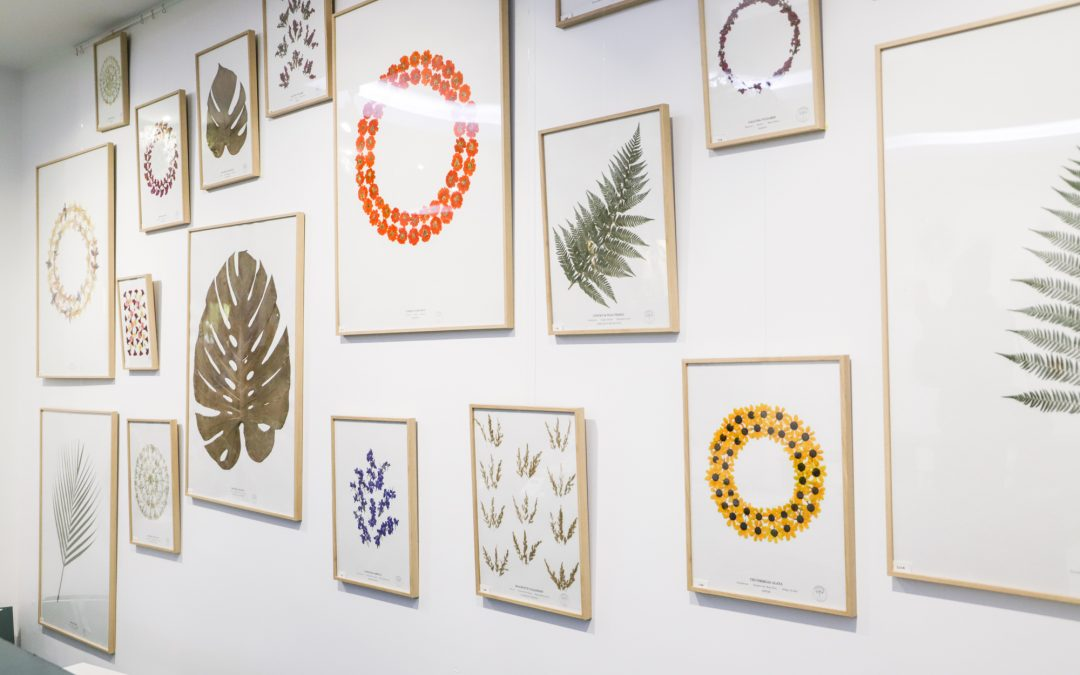 Herbarium, des tableaux plus vrais que nature (Pop-Up store)