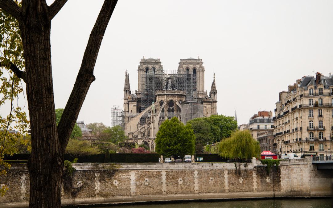 """Ariel Weil, maire du 4e : """"Tout le monde a un rapport avec Notre-Dame"""""""